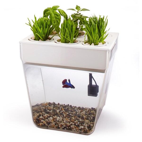 AquaFarm Self-cleaning Organic Garden Fish Tank
