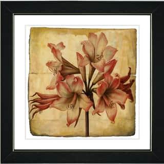 'Vintage Botanical No 33 - Antiqued Paper' Framed Art Giclee Print