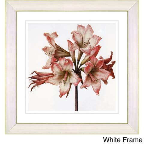 Studio Works Modern 'Vintage Botanical No 33 - White' Framed Fine Art Print