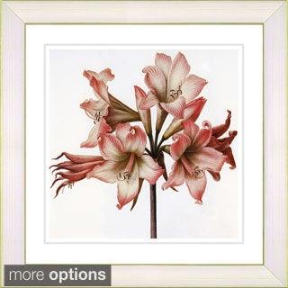 Studio Works Modern 'Vintage Botanical No 33 - White' Framed Fine Art Print