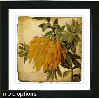 Studio Works Modern 'Vintage Botanical No 44 -Antiqued' Framed Fine Art Print