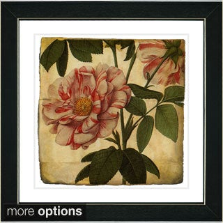 Studio Works Modern 'Vintage Botanical No 49 - Antiqued' Framed Fine Art Print