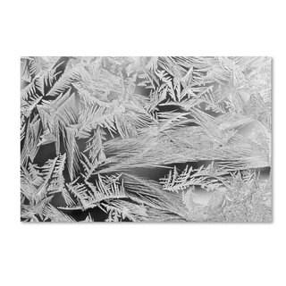 Kurt Shaffer 'Frost Pattern 2' Canvas Art