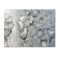 Kurt Shaffer 'Frost Pattern in the Sun' Canvas Art - Multi