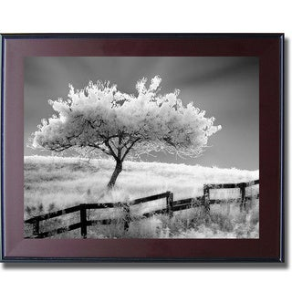 Robert Jones 'Ethereal Tree' Framed Canvas Art
