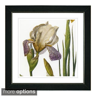 Zhee Singer 'Vintage Botanical No 42 - White' Framed Fine Art Print