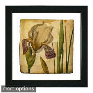 Zhee Singer 'Vintage Botanical No 42 - Antiqued' Framed Fine Art Print (4 options available)