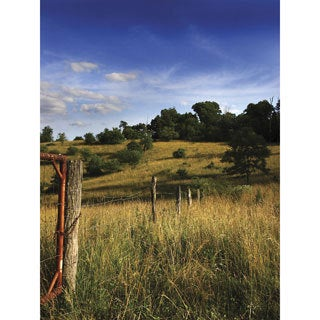 Ideal Decor Rolling Ranchland Wall Mural