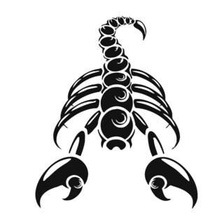 Scorpion Vinyl Wall Art