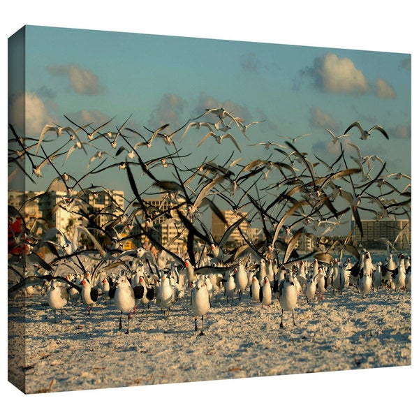 Lindsey Janich 'Crazy Birds, Siesta Key' Gallery-Wrapped Canvas - Multi