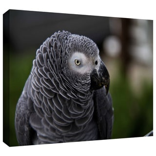 Lindsey Janich 'Parrot' Gallery-Wrapped Canvas