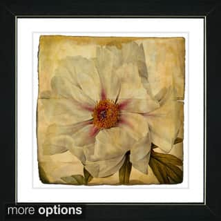 Vintage romantic art gallery for less overstock studio works modern vintage botanical 52 antiqued framed art print sciox Gallery
