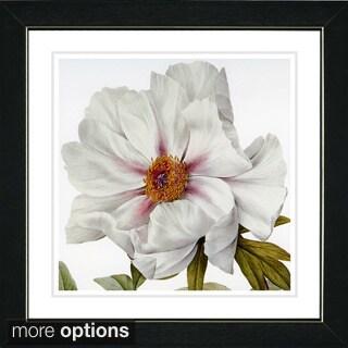 Zhee Singer 'Vintage Botanical No 52 - White' Framed Fine Art Print