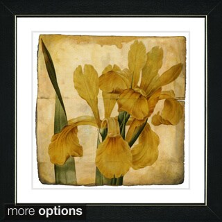 Zhee Singer 'Vintage Botanical No 46 - Antiqued' Framed Fine Art Print