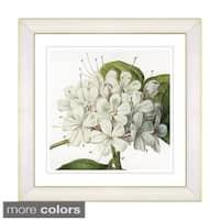 Zhee Singer 'Vintage Botanical No 047 - White' Framed Fine Art Print