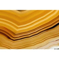 Marmont Hill Art Collective 'Amber Waves' Canvas Art - Multi-color