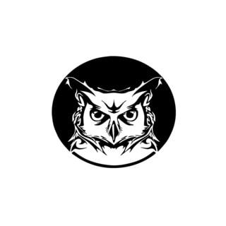 Owl Head in Circle Vinyl Wall Art
