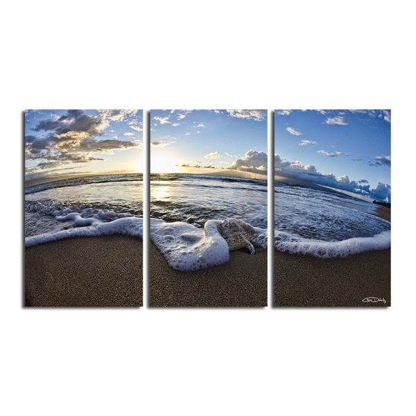 Shop Christopher Doherty \'Sea Star II\' 3-piece Canvas Wall Art ...
