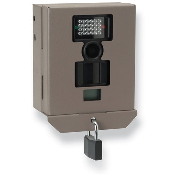 GSM Stealth Cam Security/Bear Box