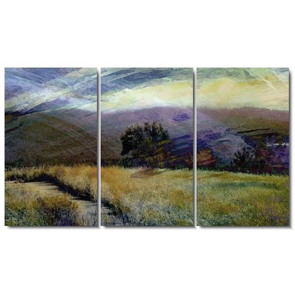 Studio Works Modern 'Sonoma Meadow Tryptic' Fine Art Gallery Wrapped Canvas - Green