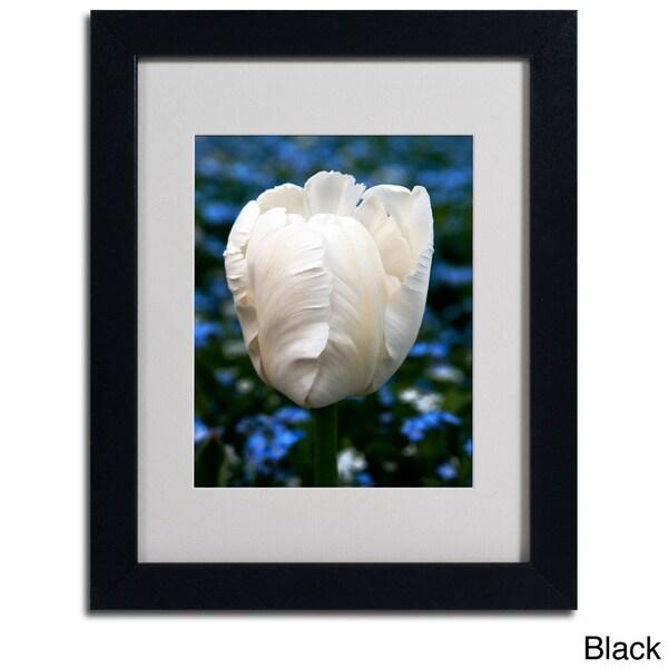 Kurt Shaffer 'Parrot Tulip' Framed Matted Art