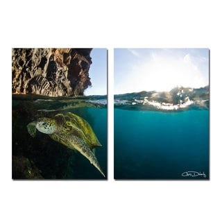 Christopher Doherty 'Sea Turtle' Canvas Wall Art (2 Piece)