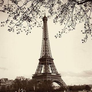Alan Blaustein 'Tour Eiffel' Gallery Wrapped Canvas Art