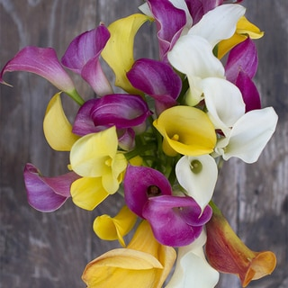 The Bouqs Volcano Collection 'Dragonfly' Deluxe Calla Lilies Flower Bouquet