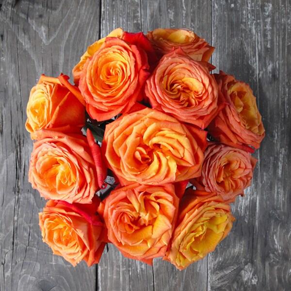 The Bouqs Volcano Collection 'Dawn' Orange Flower Bouquet
