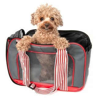 Pet Life Candy Cane Fashion Pet Carrier - One size