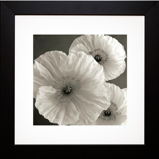 Sondra Wampler 'Poppy No. 7' Framed Art Print