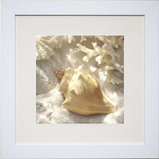 Donna Geissler 'Coral Shell IV' Framed Art Print