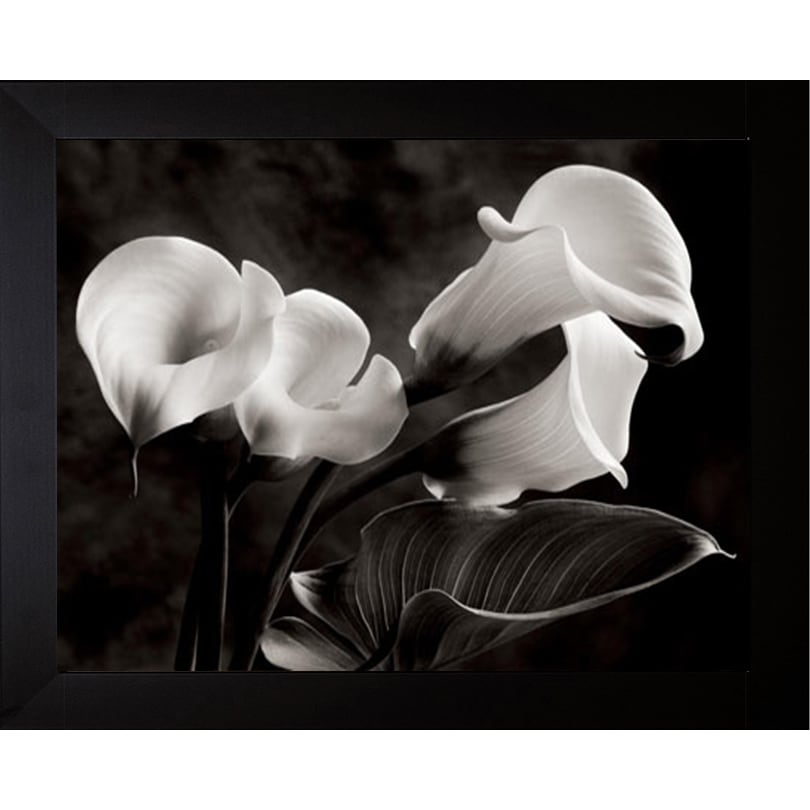 BEAUTIFUL WHITE CALLA LILY FLOWER CANVAS WALL ART PRINT PICTURE READY TO HANG