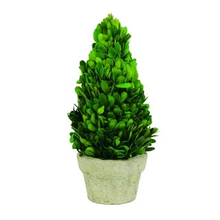 Sage & Co Boxwood 11-inch Cone Topiary
