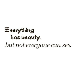 Everything Has Beauty Quote Vinyl Wall Art