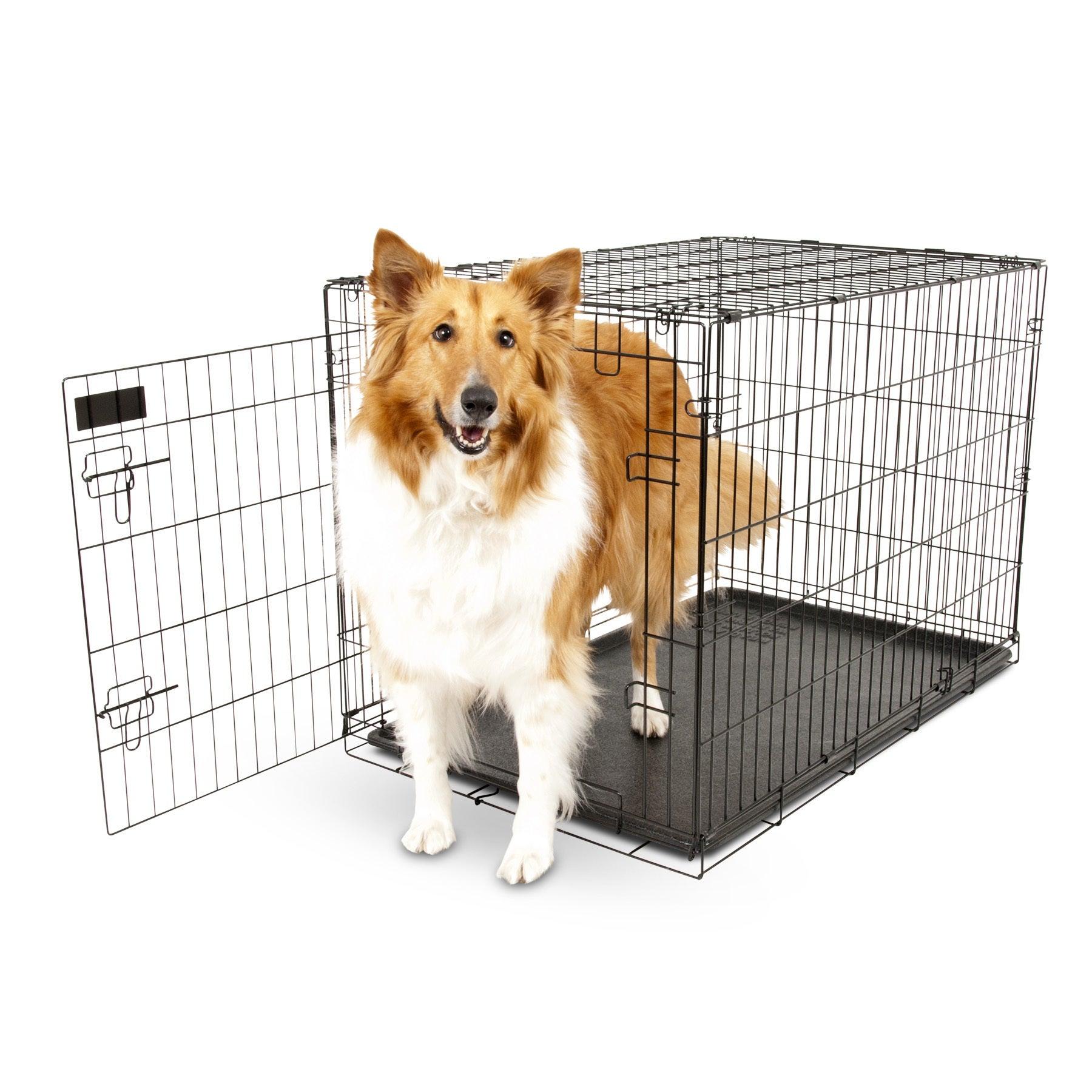 Aspen Pet Black Metal Pet Crate (Wire Kennel, 19 in, up t...