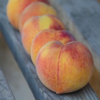 Frog Hollow Farm Organic Peaches (Pack of 6 or 12)