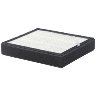 PureGuardian FLT4220 True HEPA GENUINE Replacement Filter D