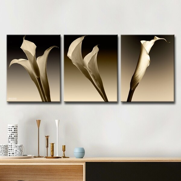 Shop Ready2hangart 3 Lillies 3 Piece Canvas Wall Art Set Grey