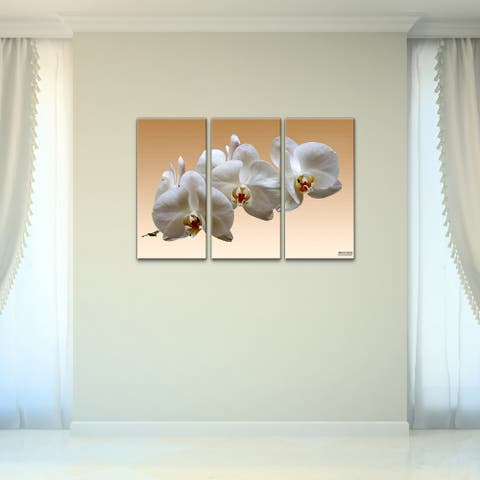 White Orchid' 3-Piece Wrapped Canvas Wall Art Set