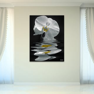 Bruce Bain 'White Orchid' Canvas Wall Art