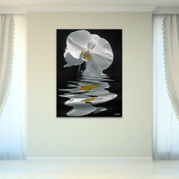 Ready2HangArt 'White Orchid' Canvas Wall Art - Black/White