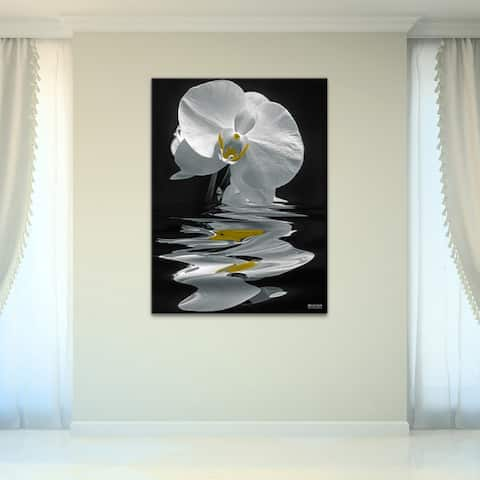 White Orchid' Floral Wrapped Canvas Wall Art