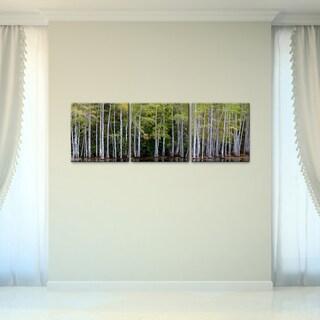 Bruce Bain 'Cypress Forest' Canvas Wall Art (3-piece Set)