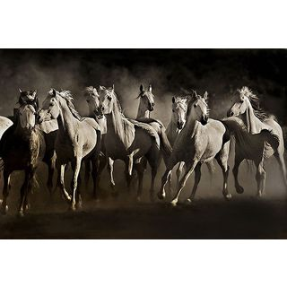 Lisa Dearing 'Dream Horses' Canvas Art