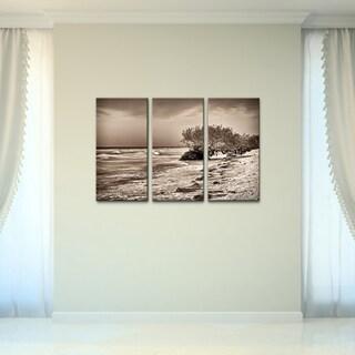 Bruce Bain 'Honeymoon Island' 3-piece Set Canvas Wall Art