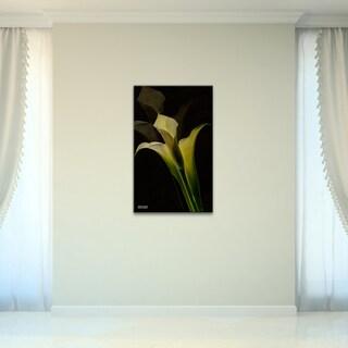 Bruce Bain 'Lilly II' Canvas Wall Art