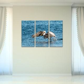 Bruce Bain 'Pelican Flight' 3-piece Set Canvas Wall Art