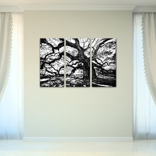 Bruce Bain 'Oak' 3-piece Set Canvas Wall Art