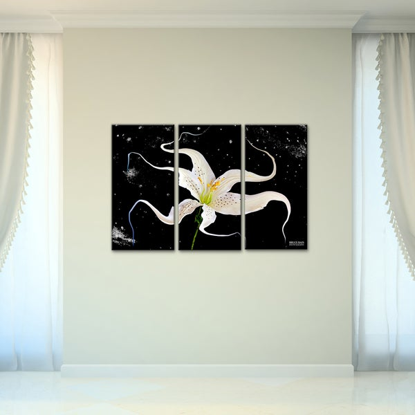 Shop Bruce Bain \'Celestial Flower\' 3-piece Set Canvas Wall Art - On ...